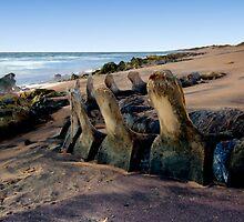 Cetacean Graveyard by Chris Paddick