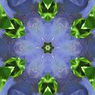 Purple Iris Kaleidoscope by Judi FitzPatrick