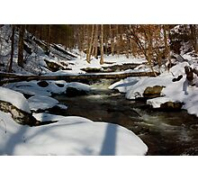 Winter's Serene Beauty Photographic Print