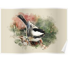 Chickadee Watercolor Art Poster
