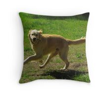 Come On Lets Play Throw Pillow