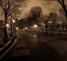 Peace...in the Park by FISHEYEJOE