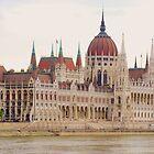 Parliament Building Budapest by Neville Gafen