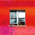 WINDOW VIEWING by Paul Quixote Alleyne
