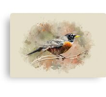 American Robin Watercolor Art Canvas Print
