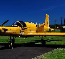 Idle plane by Brandie1