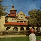 Historic Fort Worth Live Stock Building by Debbie Robbins