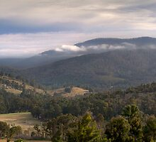 Morning view over Marysville by Vicki Moritz