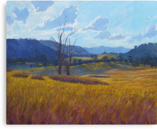 Near Bendemeer by Cary McAulay