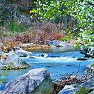 From A Mountain Stream 2 by Roger Jewell