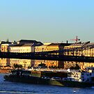 Budapest before sunset by Marius Brecher
