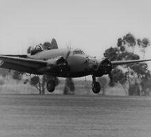 Wartime Landing by Allen Gray