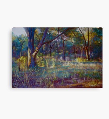 Stringybark in Autumn Light Canvas Print
