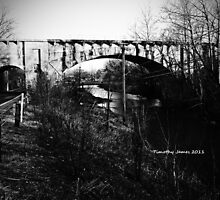 Scottland RailRoad bridge by TimothyJames100