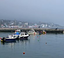 Very  Misty  Day  In Lyme by lynn carter