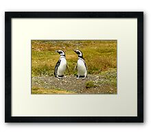 Penguin Friends Framed Print