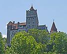 Bran Castle, Transylvania,  Romania - Dracula's castle by Margaret  Hyde