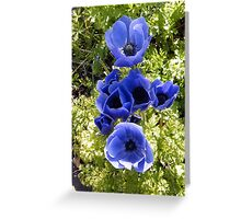 Flowers in the Garden Greeting Card