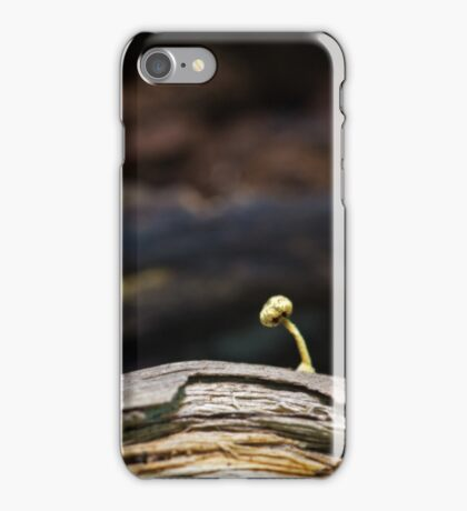 quest for light iPhone Case/Skin