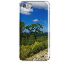 Breathtaking View iPhone Case/Skin