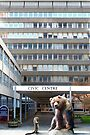 Barum&#x27;s Bruin - (Civic Centre Building Barnstaple) by Simon Groves