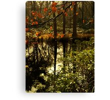 Golden green lake scene Canvas Print