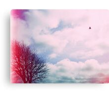 Light Leaks Canvas Print
