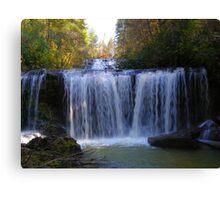 Brasstown Falls Canvas Print
