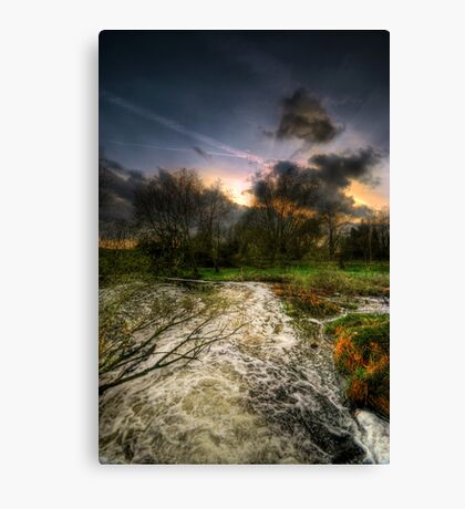 Feeling Over The Weather Canvas Print