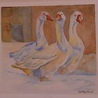 "3 Geese ""Are we going quackers?"" by sueangel"