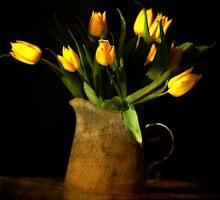 tulipes jaunes by Sonia de Macedo-Stewart