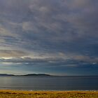 Kingston Beach, Tasmania by Ricky Pfeiffer