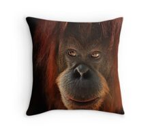 Kiani Throw Pillow