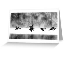 A flock  Greeting Card