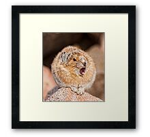 The Deadliest Animal Above Tree-Line Framed Print
