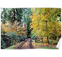 Autumn lane stroll Poster