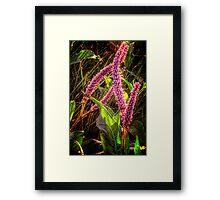 Glow Sticks Framed Print