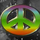 Hello Hippies by DEB CAMERON