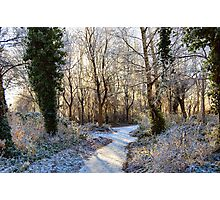 FROSTY MORNING COLOURS. Photographic Print