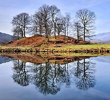 The Lake District - River Brathay by Dave Lawrance