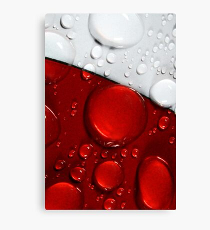 Abstract in Red & White Canvas Print