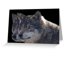 Canis Lupus , two in a Row Greeting Card