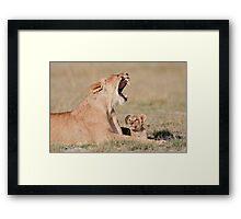 Lioness & Cub Amboseli National Park, Kenya Framed Print
