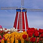 Windmill and Tulips by LucyAbrao