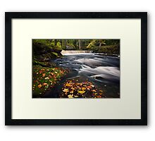 Golden time Framed Print