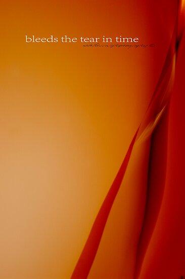 Bleeds The Tear In Time © Vicki Ferrari Photography by Vicki Ferrari