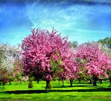 A Park In Bloom by Linda Miller Gesualdo