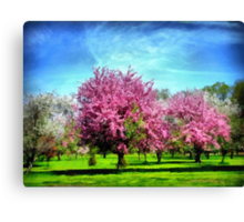 A Park In Bloom Canvas Print