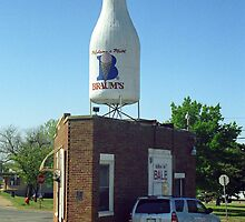 Route 66 - Giant Milk Bottle by Frank Romeo