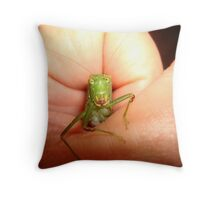 Safe in my hand...a katydid Throw Pillow